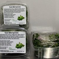 kale microgreens packaged in clam shells