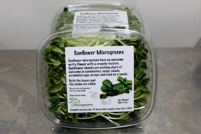harvested sunflower microgreens packed in clam shells