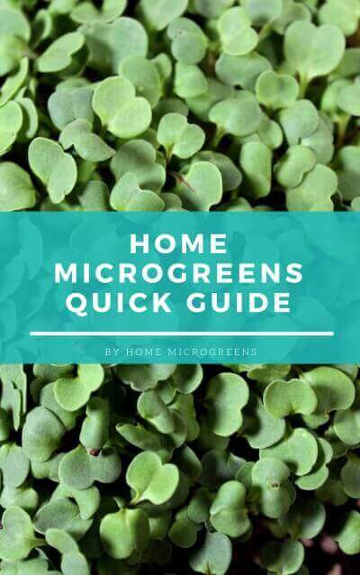 home microgreens quick starter guide cover