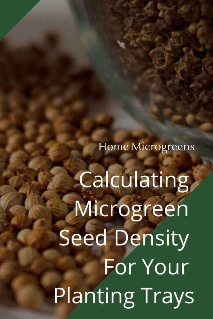 calculating microgreen seed density