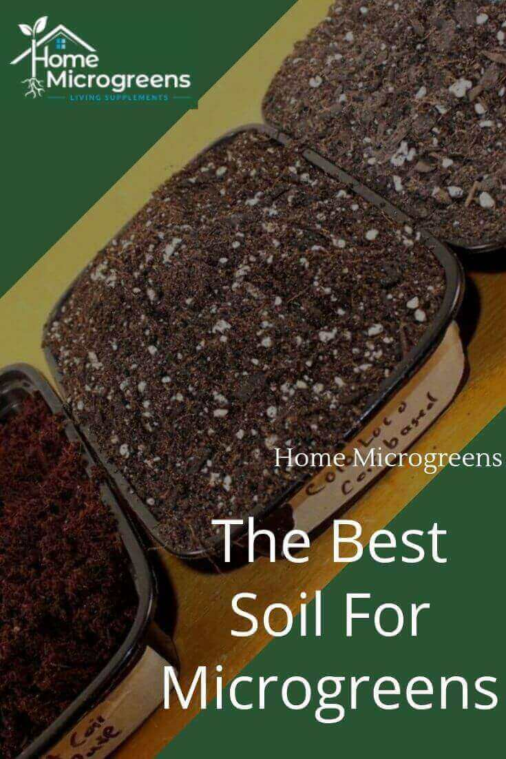 what is the best soil for microgreens