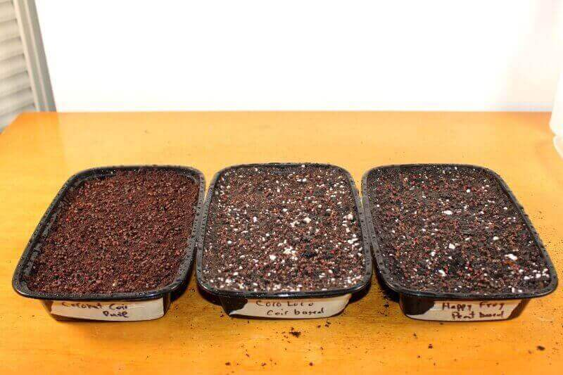soil for microgreens test day 0