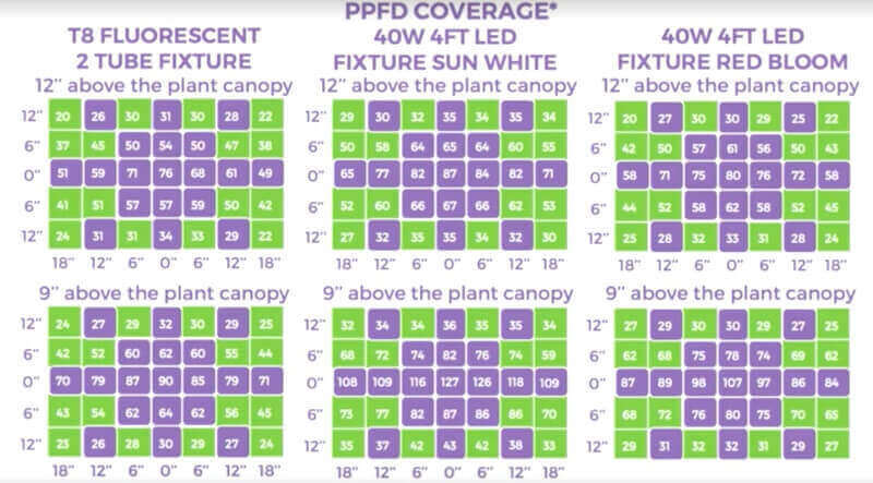 LED light intensity for microgreens