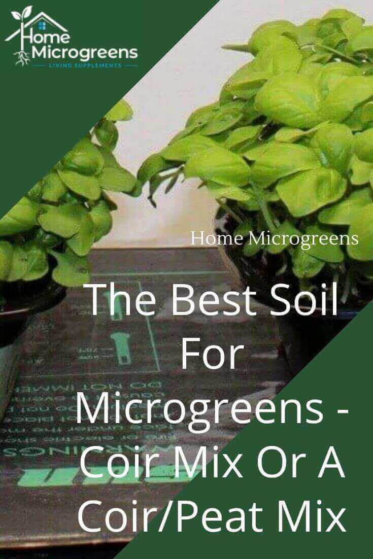 What soil works best for microgreens