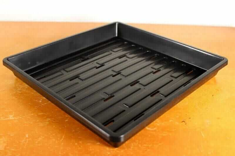 1010 microgreen trays