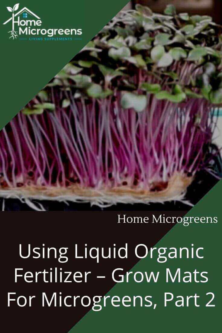 ocean solution a liquid organic fertilizer