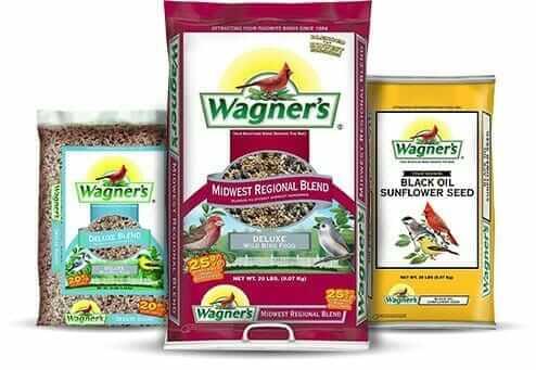 don't use bird seed as microgreen seeds